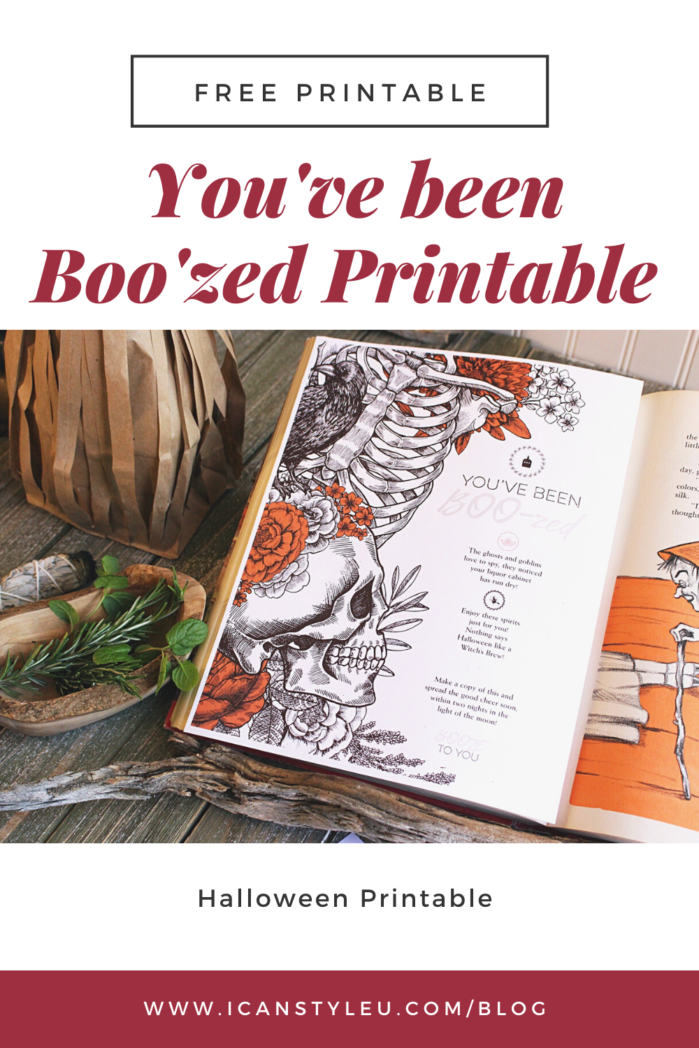 You've been Boo'zed Printable