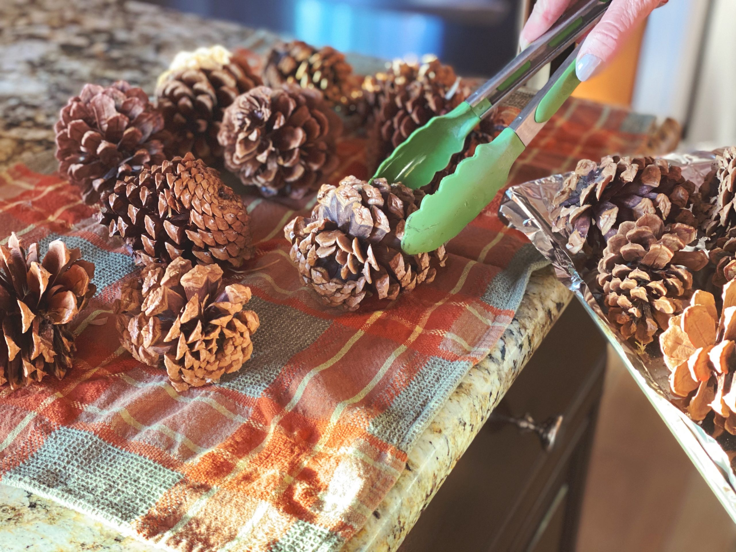 Pinecones Foraging for Holiday Decor